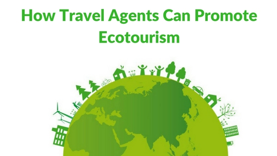 how-travel-agents-can-promote-ecotourism-1